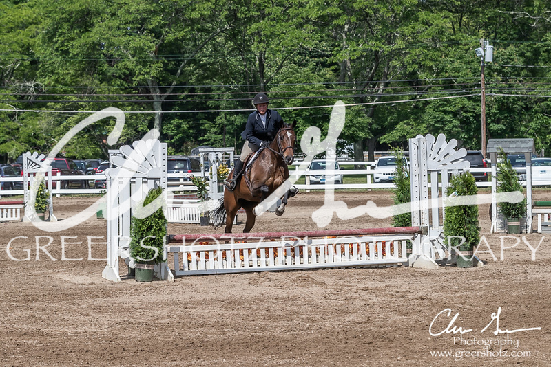 BRV Charity Horse show-9238