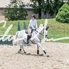 BRV Charity Horse show-8920