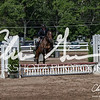 BRV Charity Horse show-9252