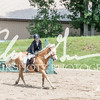 BRV Charity Horse show-8515