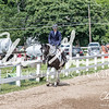 BRV Charity Horse show-9190