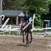 BRV Charity Horse show-8908