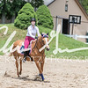 BRV Charity Horse show-8785