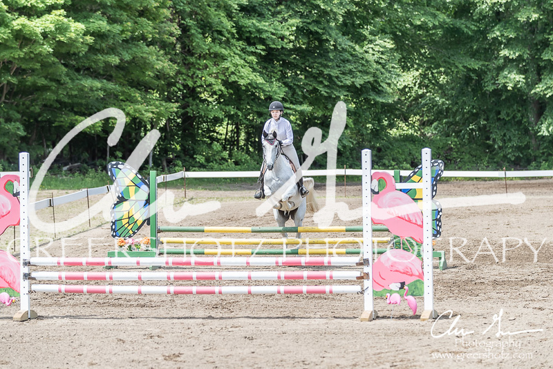 BRV Charity Horse show-8535