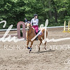 BRV Charity Horse show-8770
