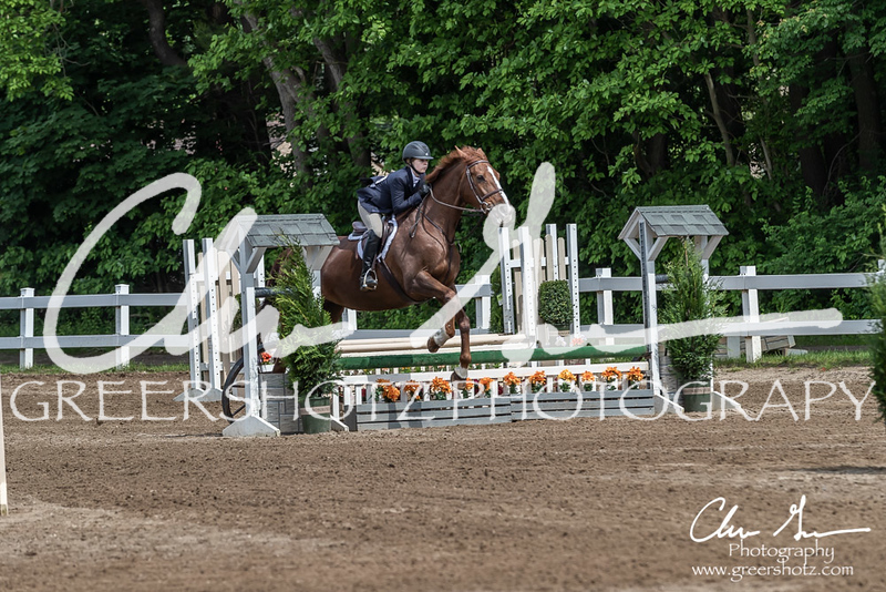 BRV Charity Horse show-9178