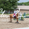 BRV Charity Horse show-8667