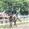 BRV Charity Horse show-8619
