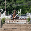 BRV Charity Horse show-9345
