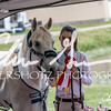 BRV Charity Horse show-9031