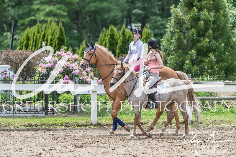 BRV Charity Horse show-8793