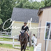 BRV Charity Horse show-8906