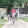 BRV Charity Horse show-9093