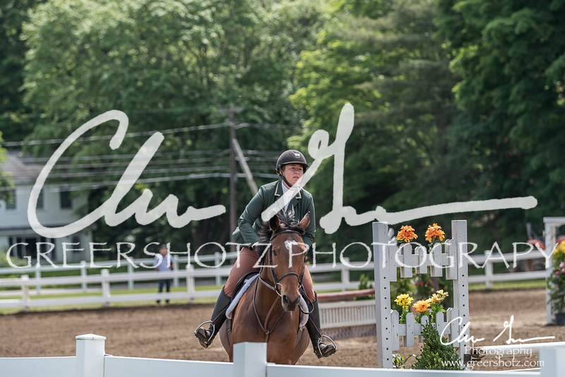BRV Charity Horse show-8484
