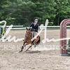 BRV Charity Horse show-9008