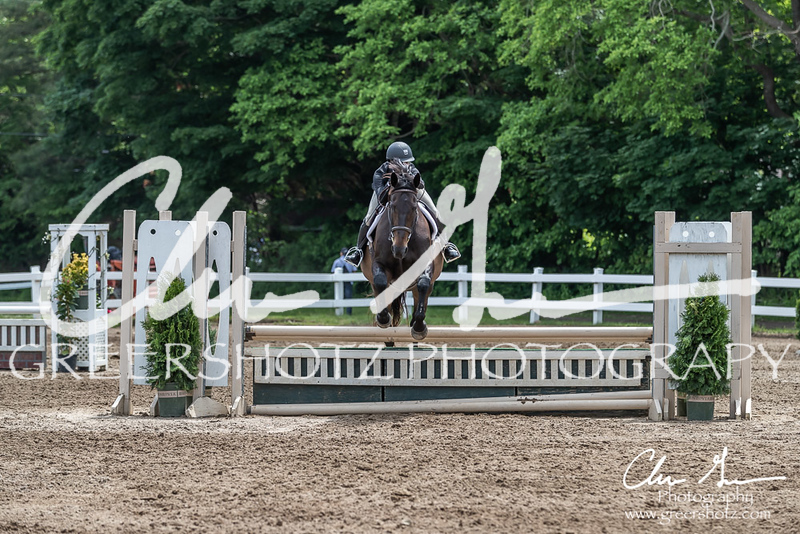 BRV Charity Horse show-8638