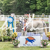BRV Charity Horse show-9066