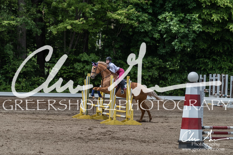 BRV Charity Horse show-8715