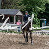 BRV Charity Horse show-8910