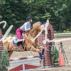 BRV Charity Horse show-8781