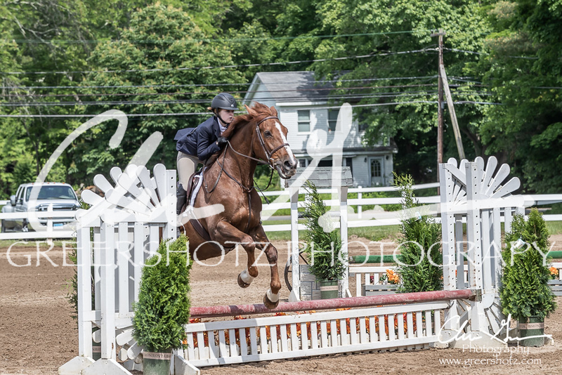 BRV Charity Horse show-9195
