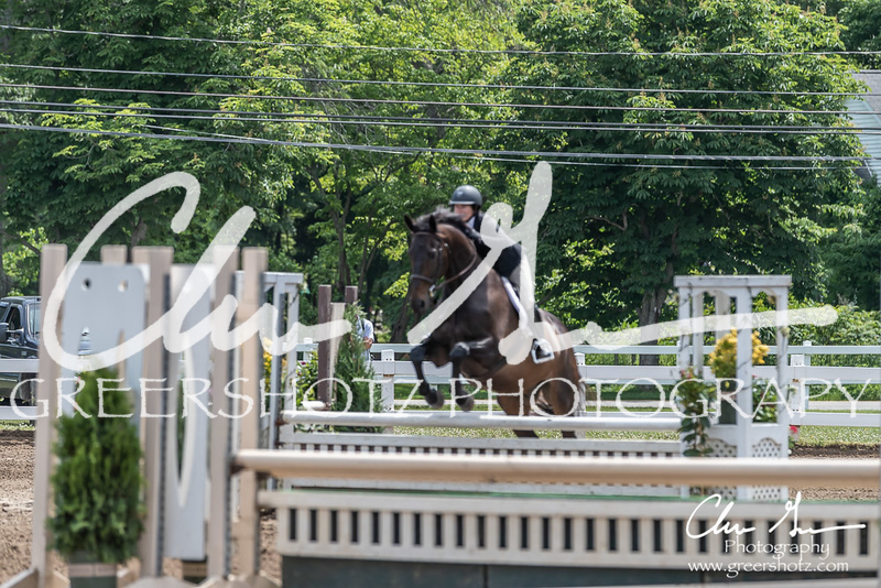 BRV Charity Horse show-8519