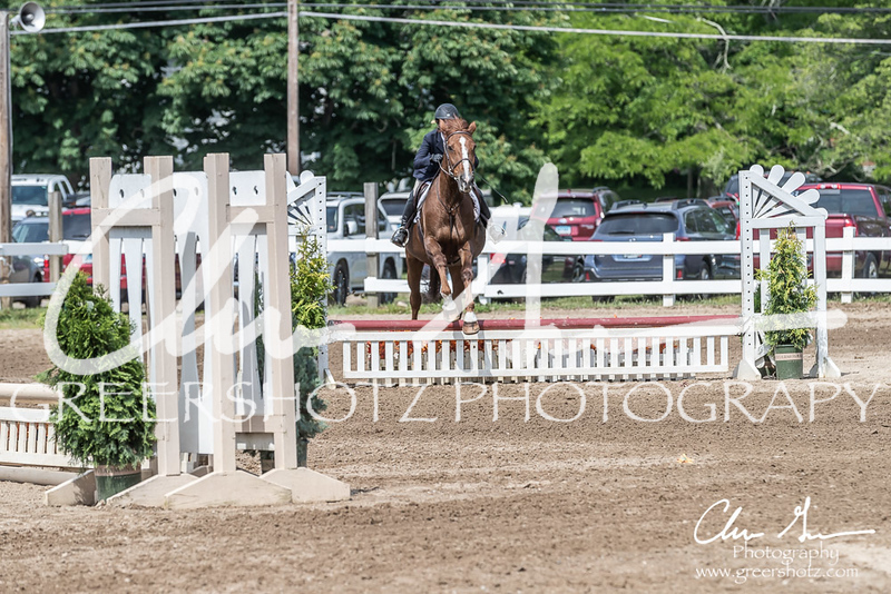 BRV Charity Horse show-9205