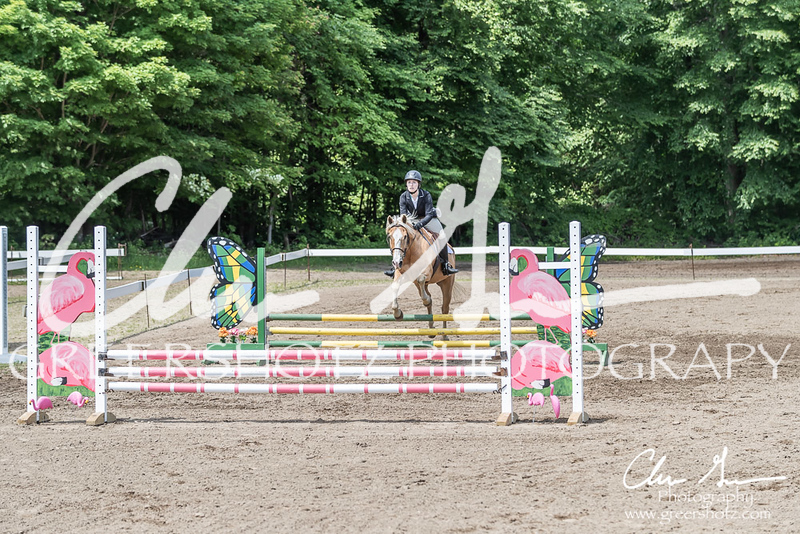 BRV Charity Horse show-8496