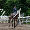 BRV Charity Horse show-8865