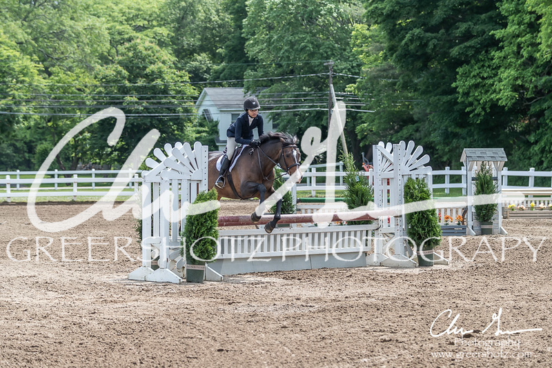 BRV Charity Horse show-8533