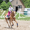 BRV Charity Horse show-8788