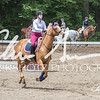 BRV Charity Horse show-8779