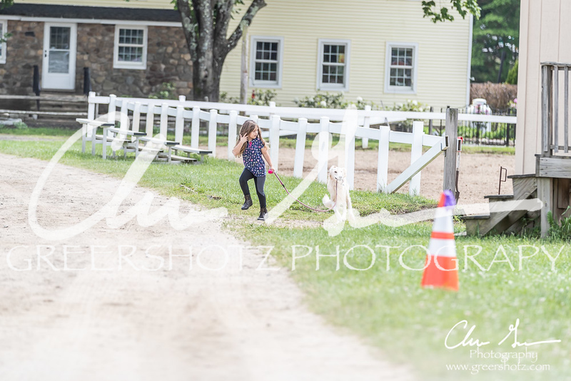BRV Charity Horse show-9108