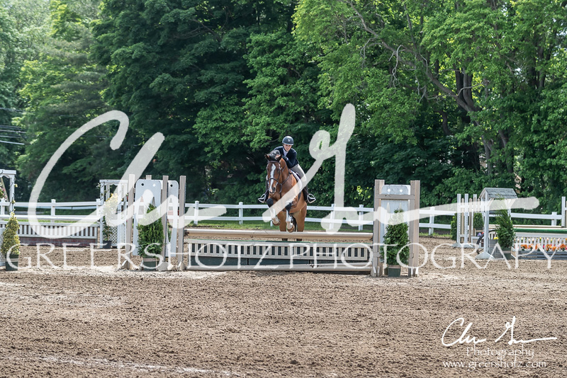 BRV Charity Horse show-8527