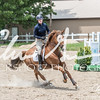BRV Charity Horse show-8935