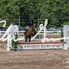 BRV Charity Horse show-9261