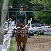 BRV Charity Horse show-8661