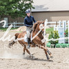 BRV Charity Horse show-8936