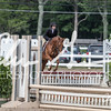 BRV Charity Horse show-9296