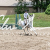 BRV Charity Horse show-8685