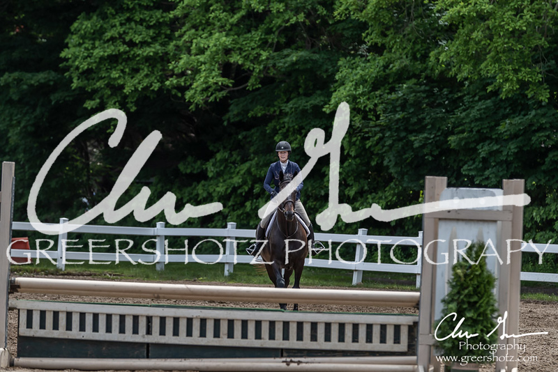 BRV Charity Horse show-8743