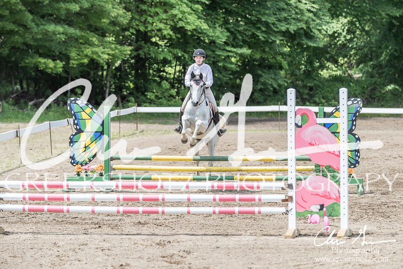BRV Charity Horse show-8633