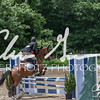 BRV Charity Horse show-8976