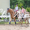 BRV Charity Horse show-8795