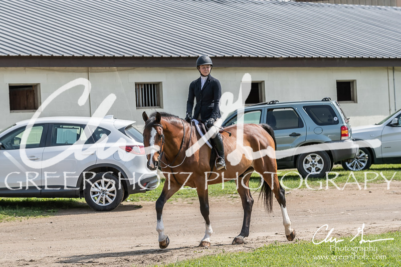 BRV Charity Horse show-8304