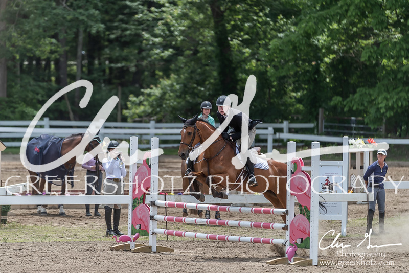 BRV Charity Horse show-8978