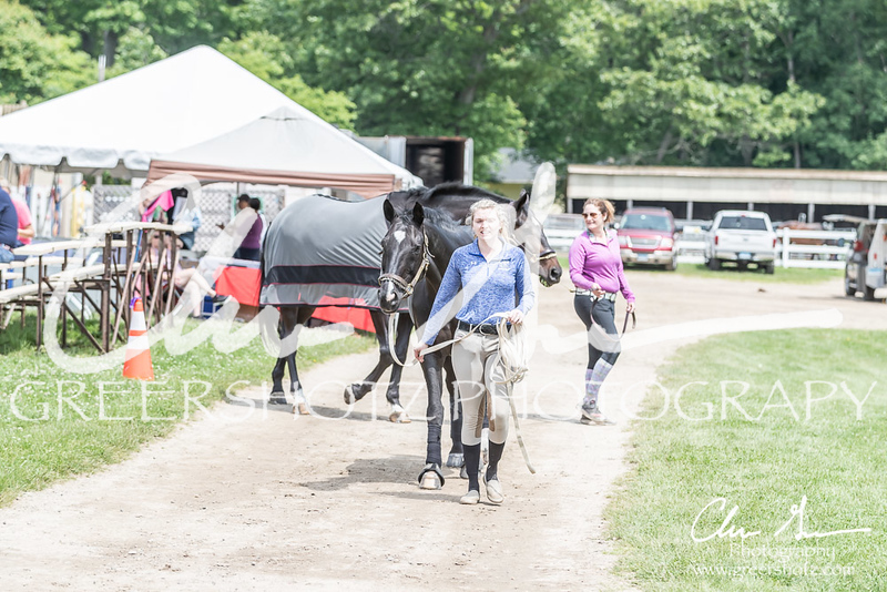 BRV Charity Horse show-8625