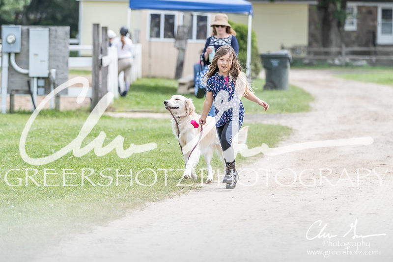 BRV Charity Horse show-9146