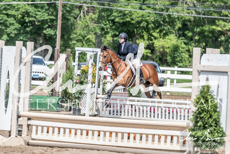 BRV Charity Horse show-9201
