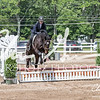 BRV Charity Horse show-9220